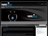 SyncView Security & Protection Website Screenshot