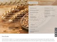 Christophoros Ioannou LLC Website Screenshot