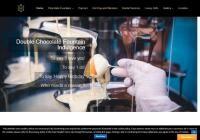 Chocolate Fountains Rentals & Sales Website Screenshot