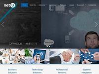 NetU Consultants Website Screenshot