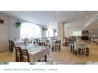 Mimosa Beach Hotel Website Screenshot