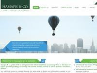 Hassapis & Co Accountants Website Screenshot